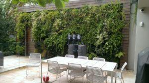 living_garden_wall_-_hill_terrace_mosman_park